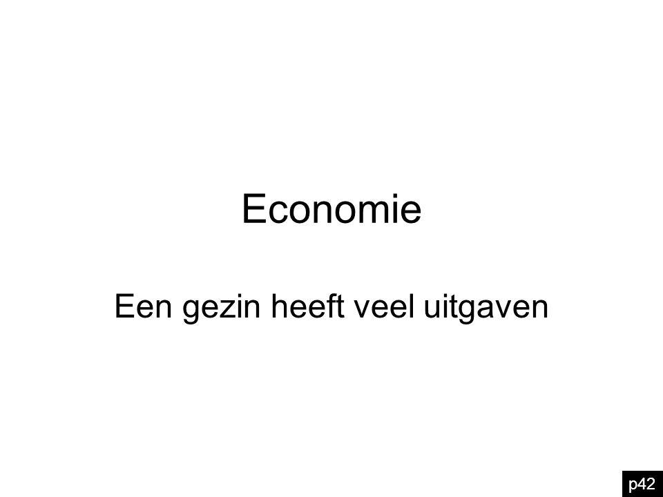 Economie Een gezin heeft veel uitgaven p42