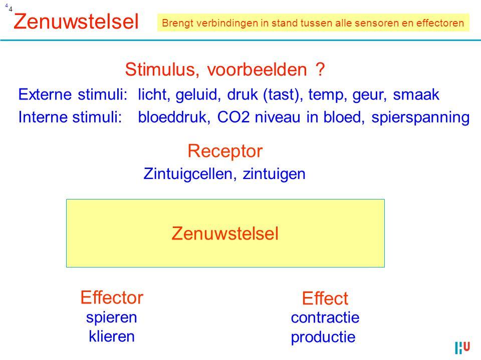 4 Zenuwstelsel Interne stimuli: Stimulus, voorbeelden .