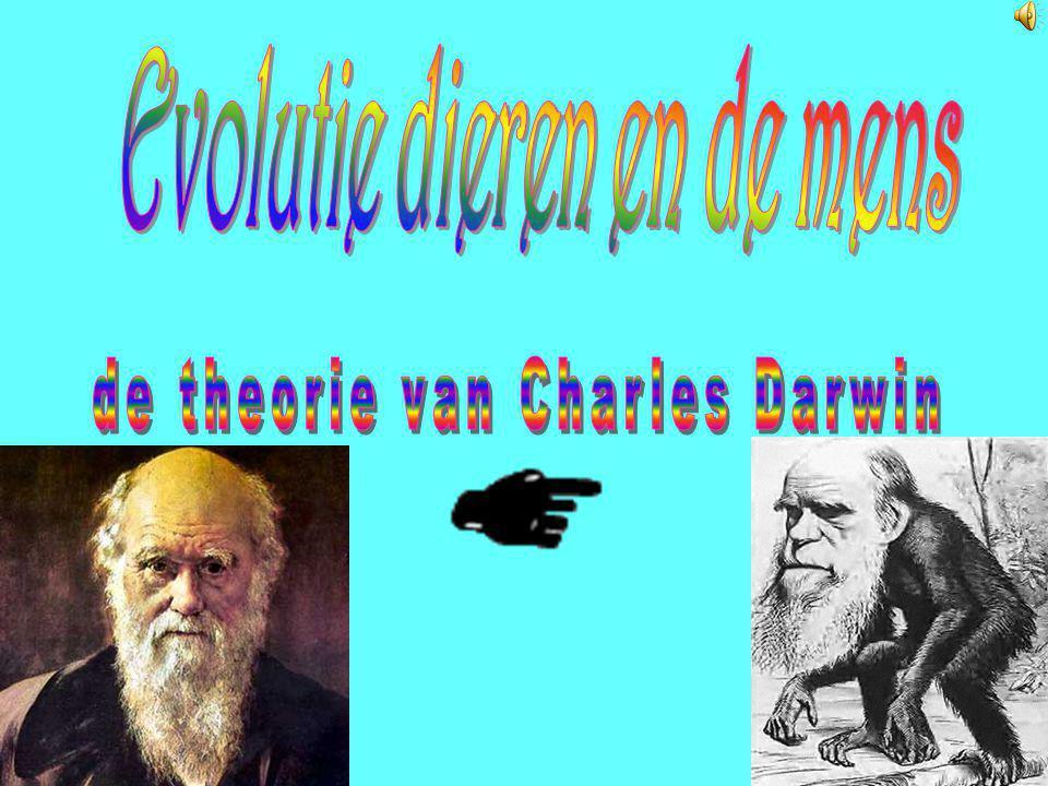 Inhoudsopgave: 1. Evolutie diersoorten en de mens. 2. DNA en genen. 3. Tweelingen. 4. De evolutie van geld. 5. De evolutie van de mobiele telefoon. 6.