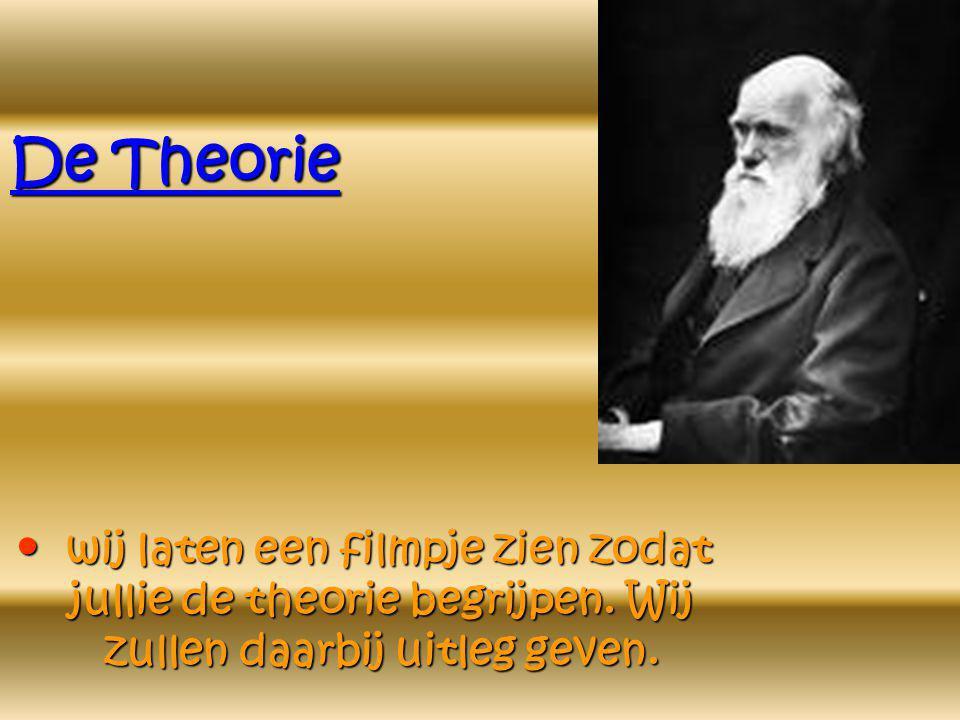 De Theorie • w• w• w• wij laten een filmpje zien zodat jullie de theorie begrijpen.