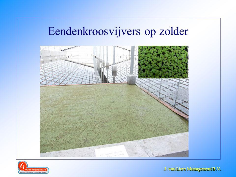 J. van Liere Management B.V. J. van Liere Management B.V. Eendenkroosvijvers op zolder
