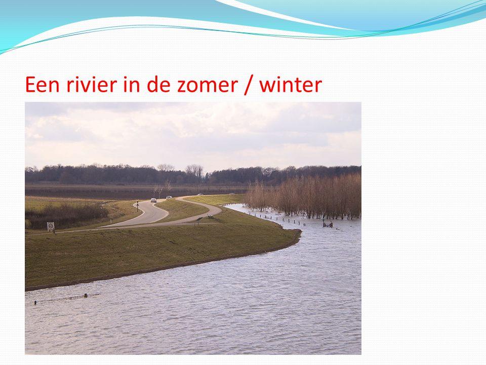 Een rivier in de zomer / winter