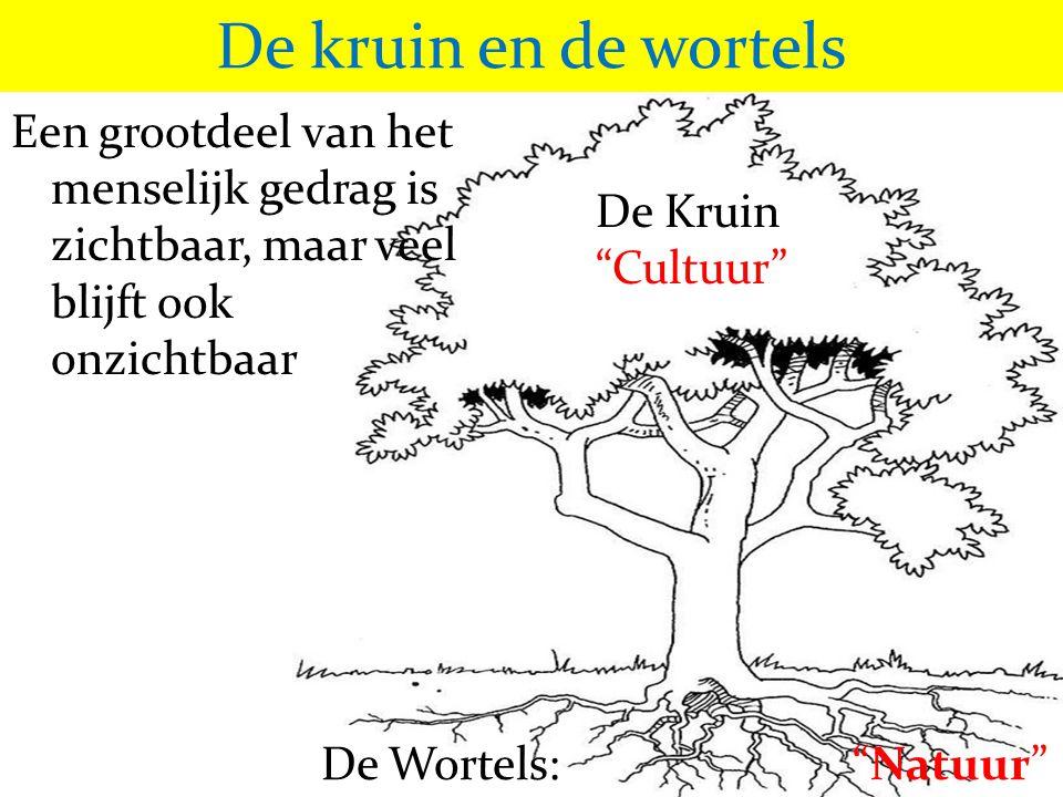 """De kruin en de wortels Een grootdeel van het menselijk gedrag is zichtbaar, maar veel blijft ook onzichtbaar De Kruin """"Cultuur"""" De Wortels: """"Natuur"""""""