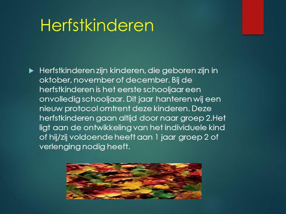 Oudste Kleuters  Kijk Registratie (twee keer per jaar)  Werkboek (taal- en rekenkundige opdrachten n.a.v. Kleuterplein)  Schrijfschrift (pengreep,