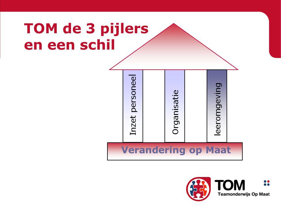 TOM de 3 pijlers en een schil leeromgeving Verandering op Maat Organisatie Inzet personee l