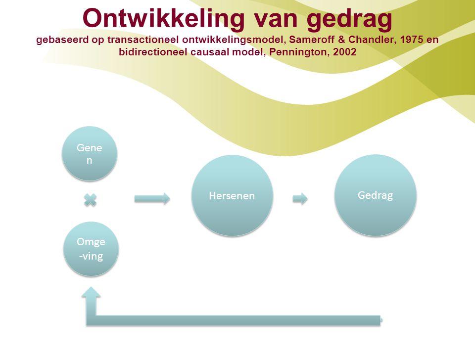 Ontwikkeling van gedrag gebaseerd op transactioneel ontwikkelingsmodel, Sameroff & Chandler, 1975 en bidirectioneel causaal model, Pennington, 2002 Gene n Omge -ving Hersenen Gedrag