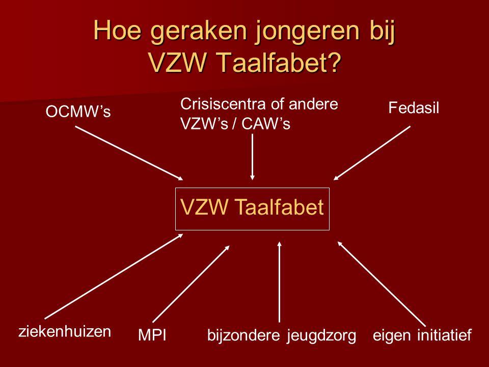 Hoe geraken jongeren bij VZW Taalfabet.