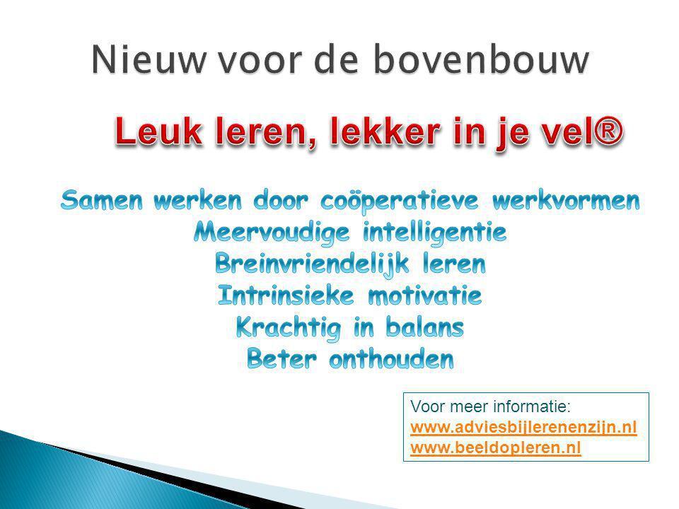 Voor meer informatie: www.adviesbijlerenenzijn.nl www.beeldopleren.nl