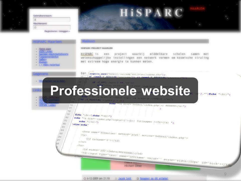 9 Professionele website