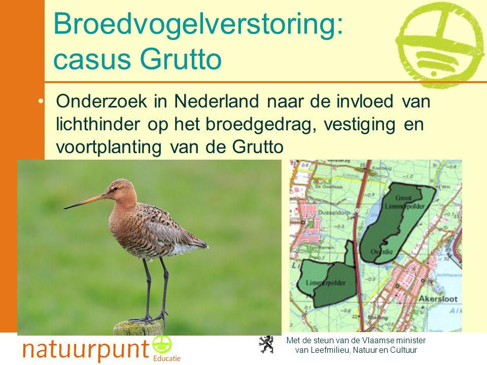 Met de steun van de Vlaamse minister van Leefmilieu, Natuur en Cultuur Broedvogelverstoring: casus Grutto •Onderzoek in Nederland naar de invloed van