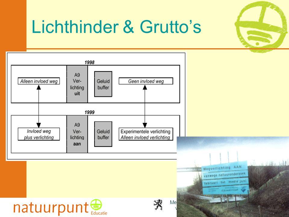 Met de steun van de Vlaamse minister van Leefmilieu, Natuur en Cultuur Lichthinder & Grutto's