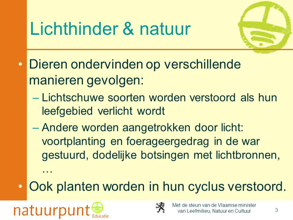 Met de steun van de Vlaamse minister van Leefmilieu, Natuur en Cultuur Lichthinder & natuur •Dieren ondervinden op verschillende manieren gevolgen: –L