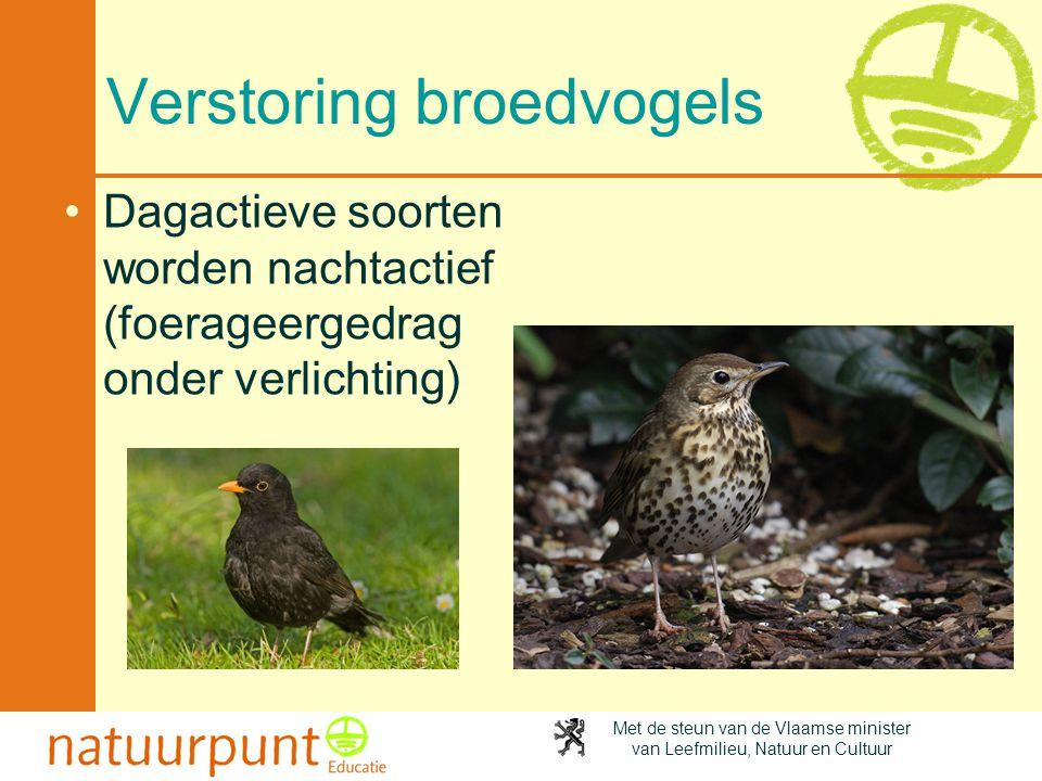 Met de steun van de Vlaamse minister van Leefmilieu, Natuur en Cultuur Verstoring broedvogels •Dagactieve soorten worden nachtactief (foerageergedrag