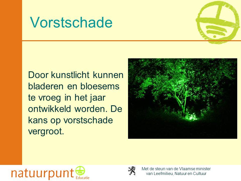 Met de steun van de Vlaamse minister van Leefmilieu, Natuur en Cultuur Vorstschade Door kunstlicht kunnen bladeren en bloesems te vroeg in het jaar on