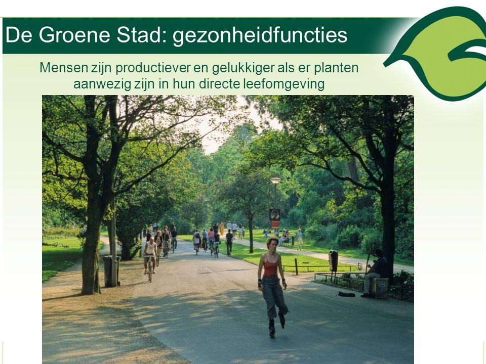 Mensen zijn productiever en gelukkiger als er planten aanwezig zijn in hun directe leefomgeving De Groene Stad: gezonheidfuncties