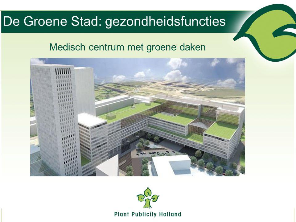 De Groene Stad: gezondheidsfuncties Medisch centrum met groene daken