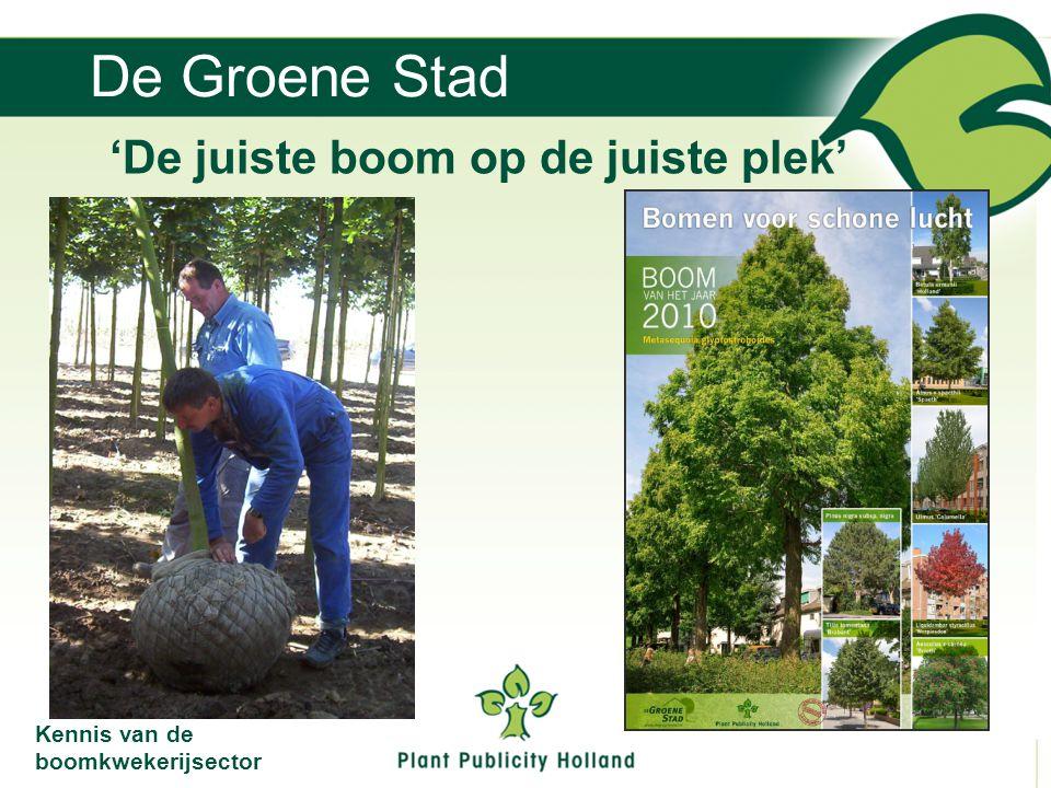 De Groene Stad 'De juiste boom op de juiste plek' Kennis van de boomkwekerijsector