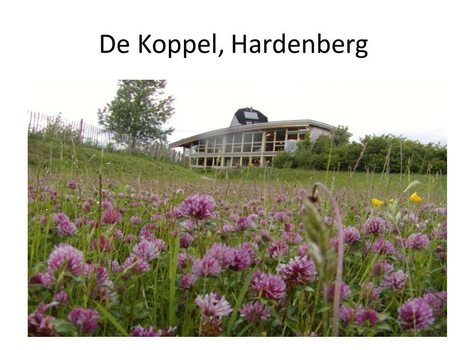 De Koppel, Hardenberg