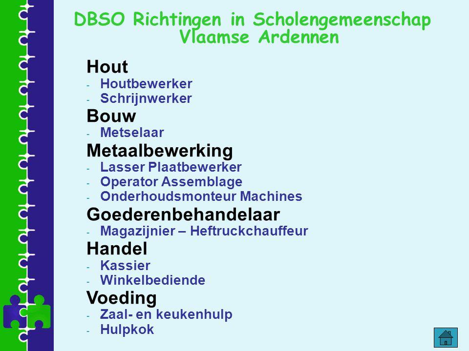 DBSO Richtingen in Scholengemeenschap Vlaamse Ardennen Hout - Houtbewerker - Schrijnwerker Bouw - Metselaar Metaalbewerking - Lasser Plaatbewerker - O