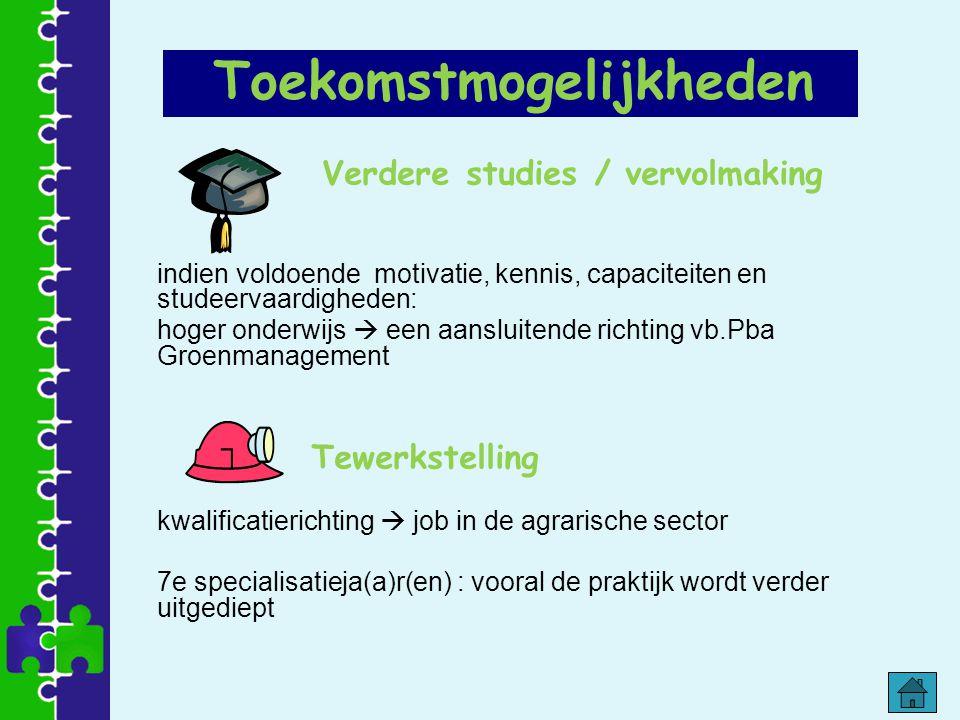 Verdere studies / vervolmaking indien voldoende motivatie, kennis, capaciteiten en studeervaardigheden: hoger onderwijs  een aansluitende richting vb