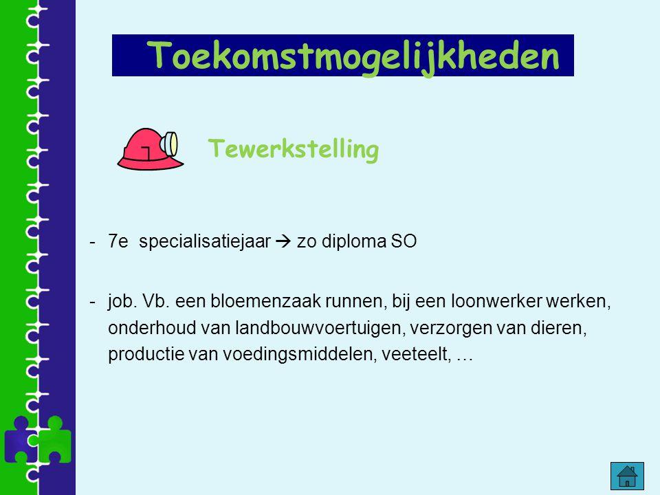 Tewerkstelling -7e specialisatiejaar  zo diploma SO -job. Vb. een bloemenzaak runnen, bij een loonwerker werken, onderhoud van landbouwvoertuigen, ve