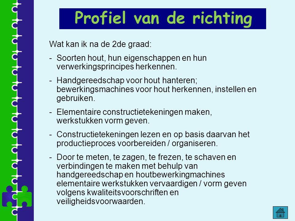 Profiel van de richting Wat kan ik na de 2de graad: -Soorten hout, hun eigenschappen en hun verwerkingsprincipes herkennen. -Handgereedschap voor hout