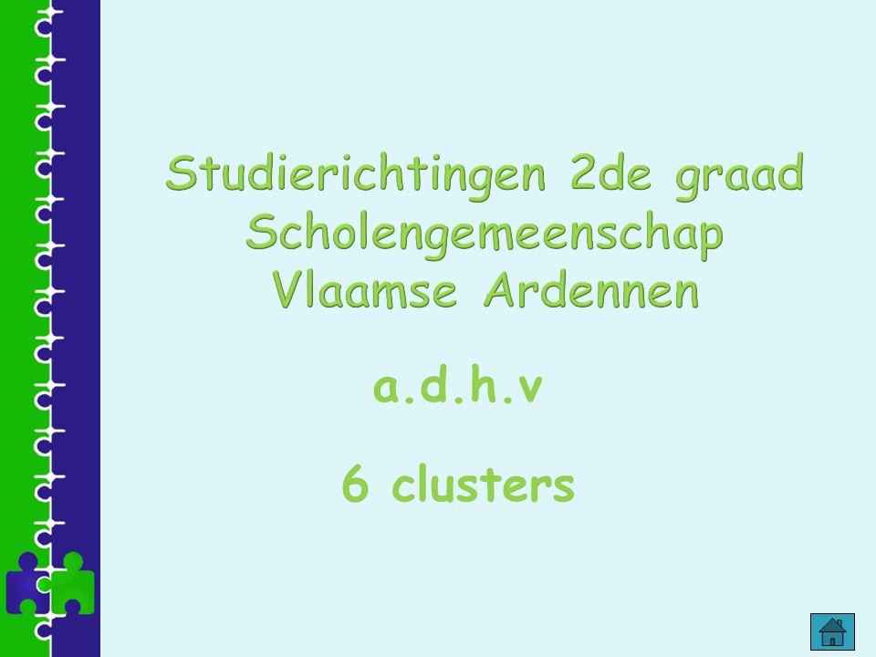 -algemene vakken -Biologie, Fysica en Chemie (telkens 2 lestijden).