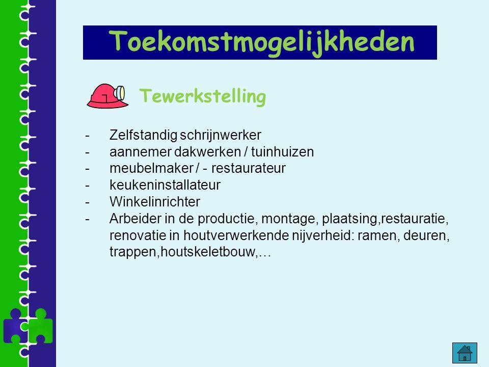 Tewerkstelling -Zelfstandig schrijnwerker -aannemer dakwerken / tuinhuizen -meubelmaker / - restaurateur -keukeninstallateur -Winkelinrichter -Arbeide