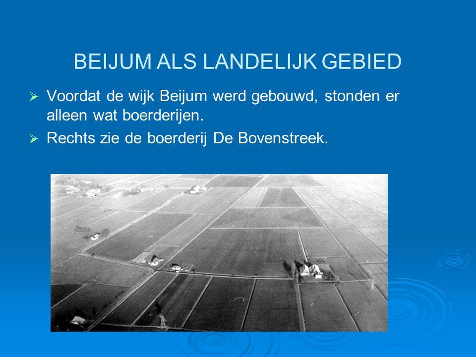 BEIJUM ALS LANDELIJK GEBIED   Voordat de wijk Beijum werd gebouwd, stonden er alleen wat boerderijen.   Rechts zie de boerderij De Bovenstreek.