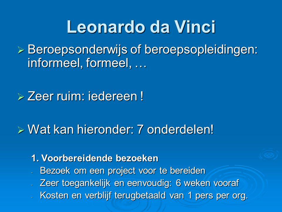 Leonardo da Vinci  Beroepsonderwijs of beroepsopleidingen: informeel, formeel, …  Zeer ruim: iedereen .