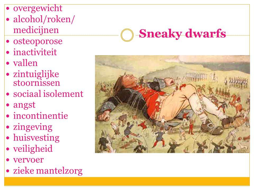Sneaky dwarfs  overgewicht  alcohol/roken/ medicijnen  osteoporose  inactiviteit  vallen  zintuiglijke stoornissen  sociaal isolement  angst 