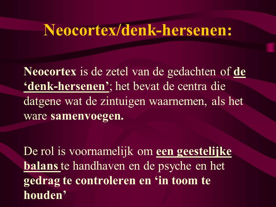 Neocortex/denk-hersenen: Neocortex is de zetel van de gedachten of de 'denk-hersenen'; het bevat de centra die datgene wat de zintuigen waarnemen, als
