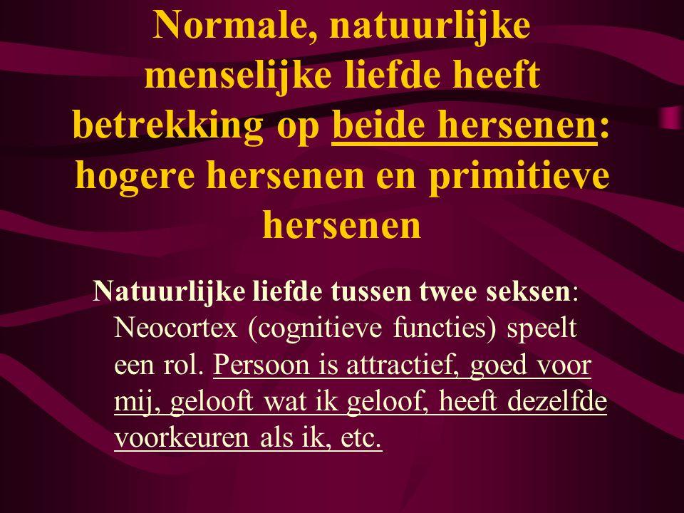 Natuurlijke liefde tussen twee seksen: Neocortex (cognitieve functies) speelt een rol. Persoon is attractief, goed voor mij, gelooft wat ik geloof, he