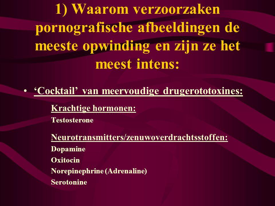 •'Cocktail' van meervoudige drugerototoxines: Krachtige hormonen: Testosterone Neurotransmitters/zenuwoverdrachtsstoffen: Dopamine Oxitocin Norepineph