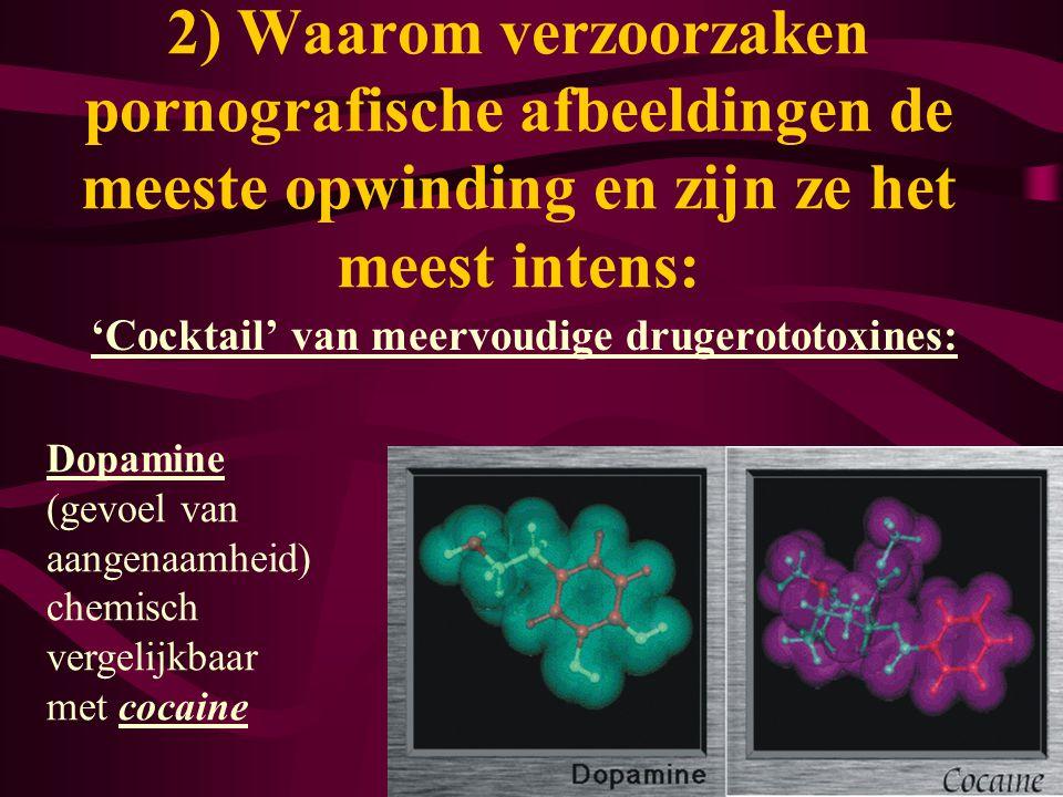 'Cocktail' van meervoudige drugerototoxines: 2) Waarom verzoorzaken pornografische afbeeldingen de meeste opwinding en zijn ze het meest intens: Dopam