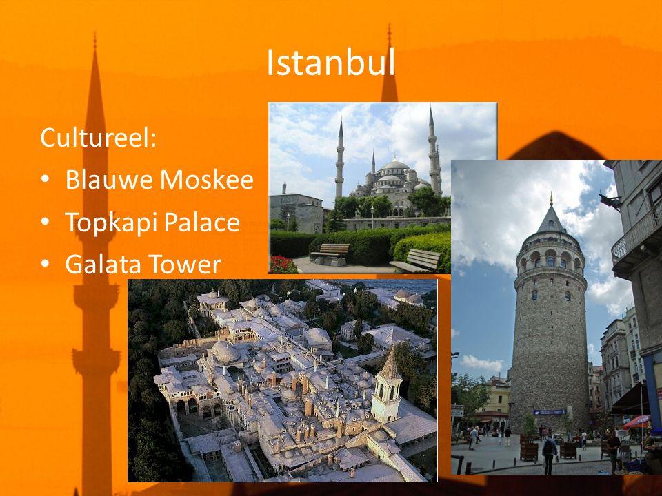 Istanbul Cultureel: • Blauwe Moskee • Topkapi Palace • Galata Tower