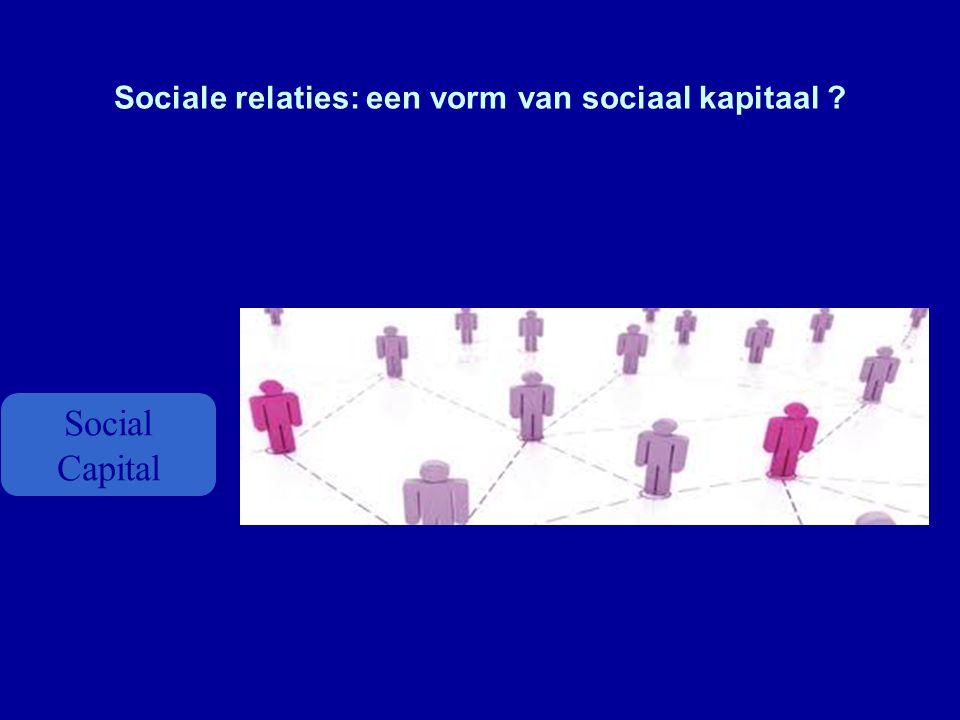 Sociale relaties: een vorm van sociaal kapitaal ? Social Capital