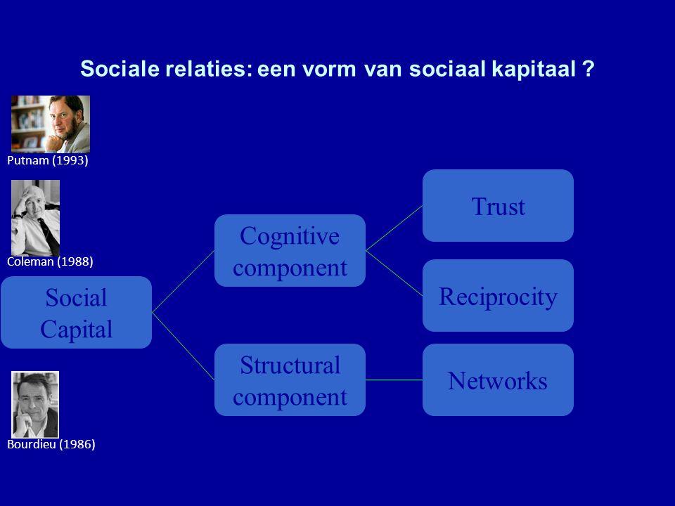Sociale relaties: een vorm van sociaal kapitaal .
