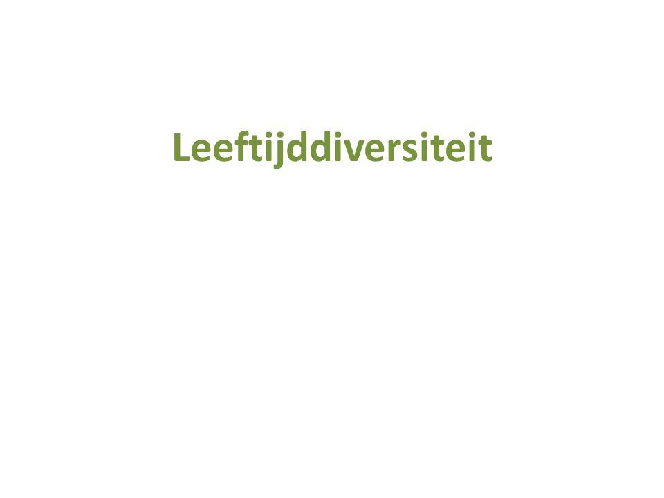 Leeftijddiversiteit