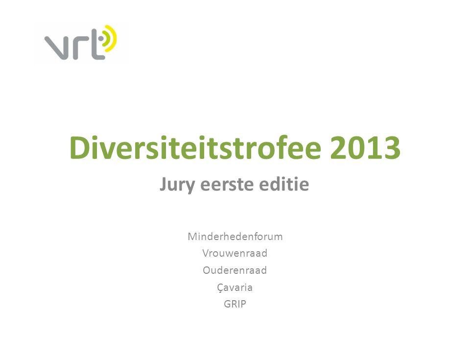 Diversiteitstrofee 2013 Jury eerste editie Minderhedenforum Vrouwenraad Ouderenraad Çavaria GRIP