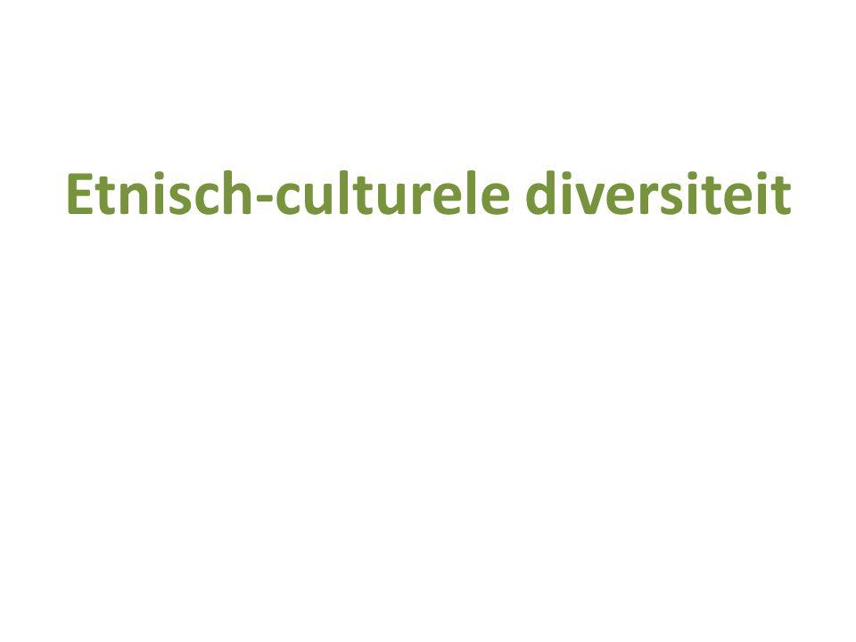 Etnisch-culturele diversiteit
