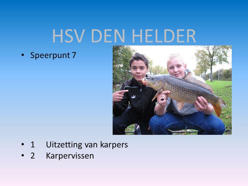 HSV DEN HELDER • Speerpunt 7 • 1Uitzetting van karpers • 2Karpervissen