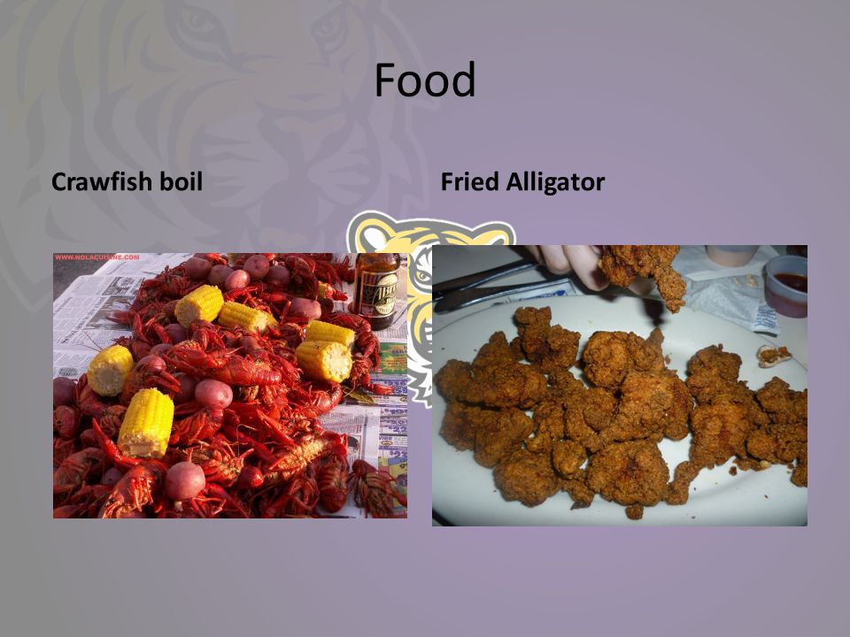 Food Crawfish boilFried Alligator