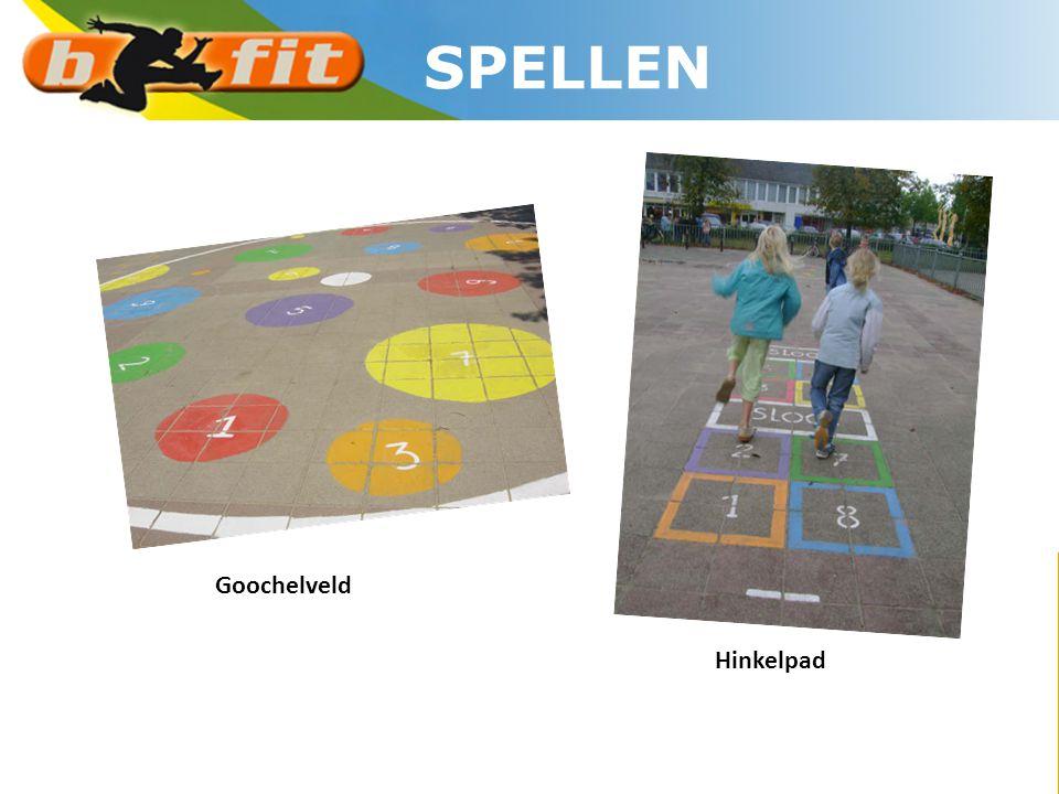 SPELLEN Goochelveld Hinkelpad