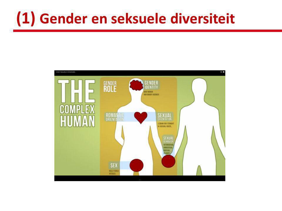 HETERONORMATIVITEIT • binaire geslachtsverdeling • M/V horen zich strikt mannelijk of vrouwelijk te gedragen • M/V horen zich als heteroseksueel te identificeren • dominant discours • M/V die niet passen in deze norm  anders & minderwaardig gezien door de meerderheid