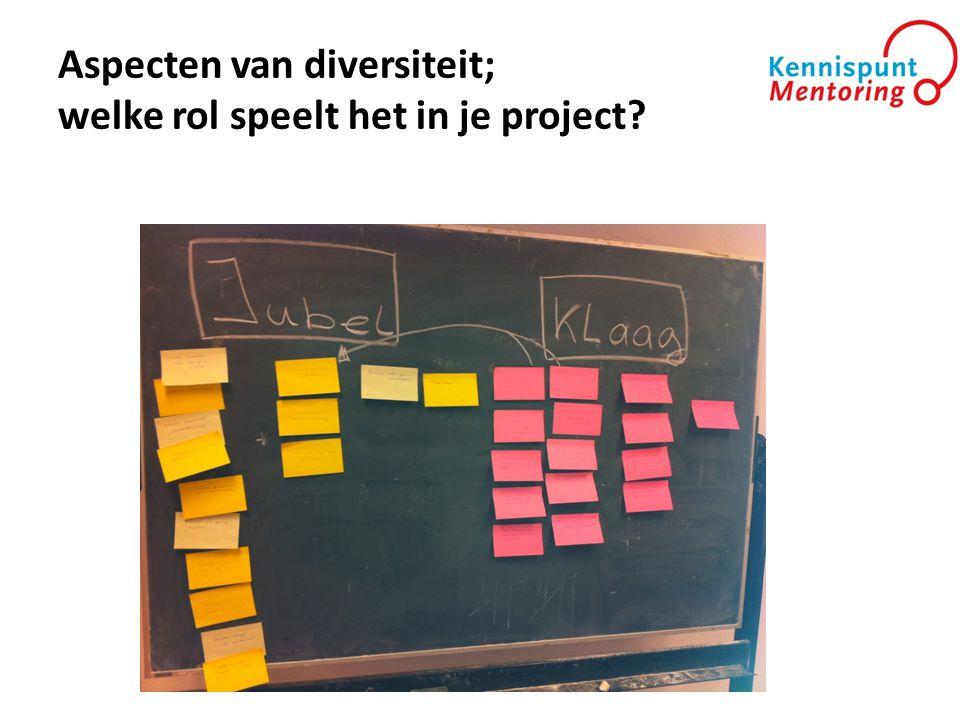 Aspecten van diversiteit; welke rol speelt het in je project?