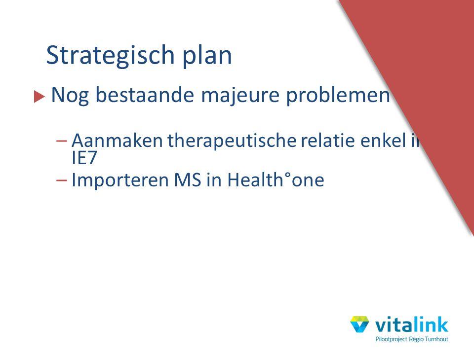  Nog bestaande majeure problemen : –Aanmaken therapeutische relatie enkel in IE7 –Importeren MS in Health°one Strategisch plan