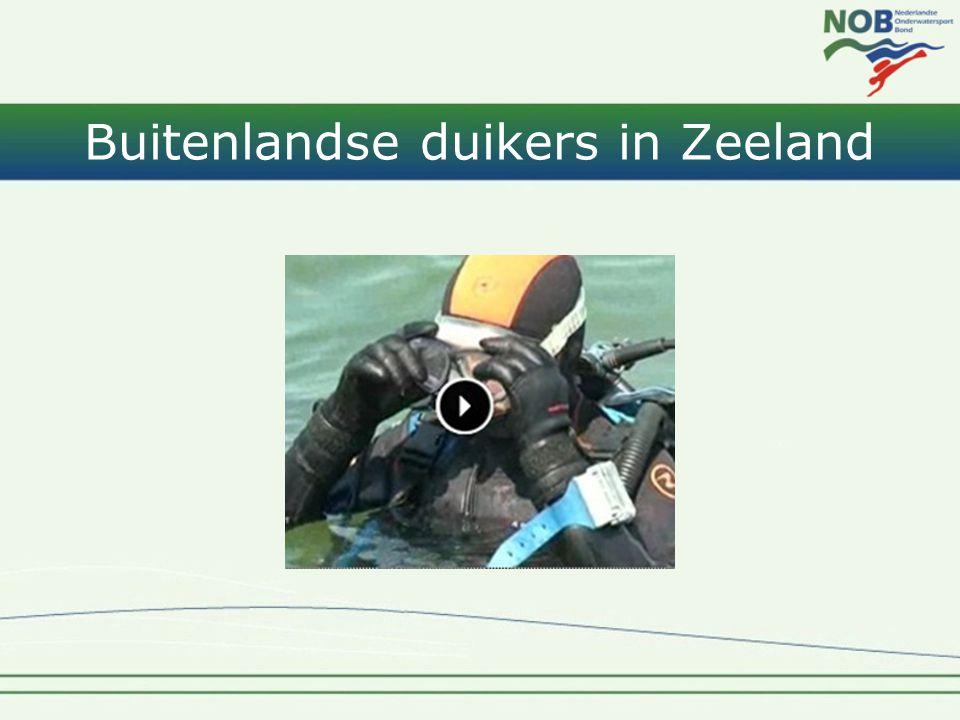 Buitenlandse duikers in Zeeland