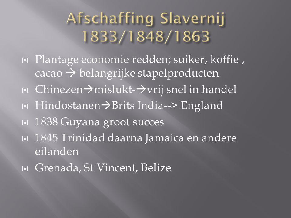  Hindostanen succesvol -> veel Creolen hadden gefaald in de landbouw-> enige animositeit  IJver, spaarzaamheid en vooruitgangsstreven  Verschil in culturele oriëntatie, moraal  Gaandeweg penetratie in alle sectoren en urbanisatie  Boek: G.Choenni & C.