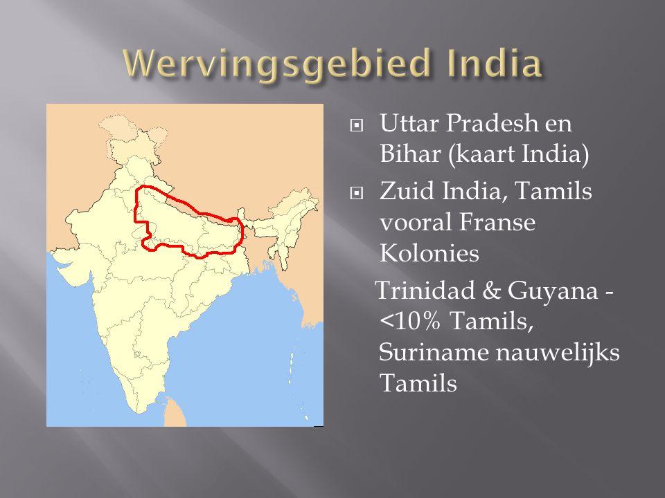  Uttar Pradesh en Bihar (kaart India)  Zuid India, Tamils vooral Franse Kolonies Trinidad & Guyana - <10% Tamils, Suriname nauwelijks Tamils